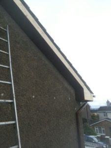 Guttering Fascia and Soffit in