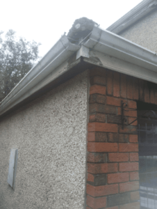 Guttering Replacement in